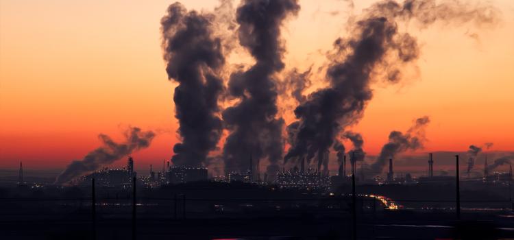 Polución ambiental y prevalencia de asma